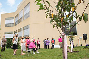 Sponsor a Tree in Blossoms of Hope's Heroes Grove at Howard County General Hospital